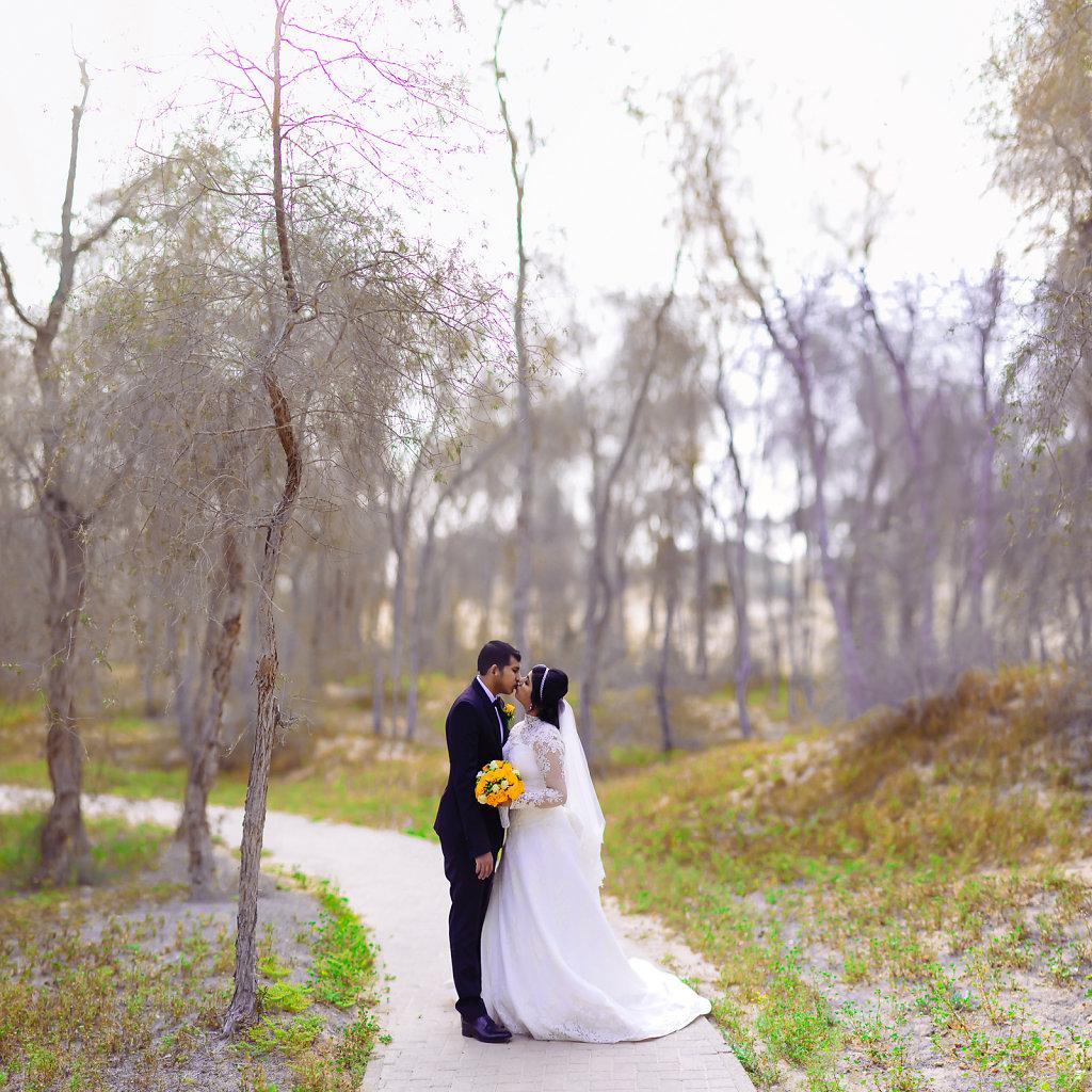 34 image bokeh panaroma for a Post Wedding Bridal Session.
